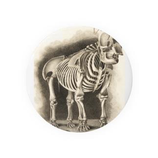 銅版画による人体骸骨 Badges