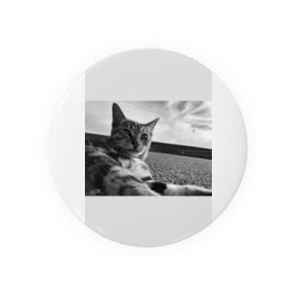 猫 Badges