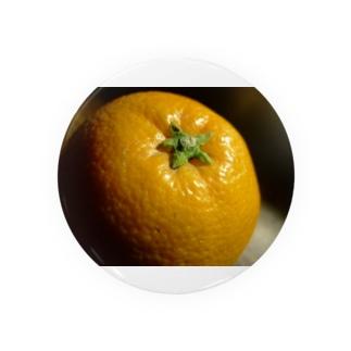 柑橘類のある光景 Badges