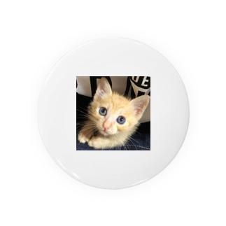 可愛い猫ちゃん💓 Badges