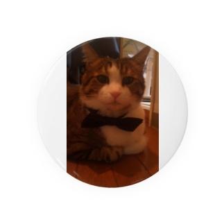 めちゃかわ猫 Badges