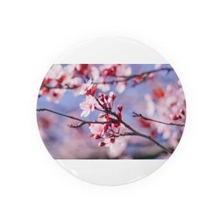 Sakura en France. Badges