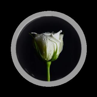 蛍.の白薔薇 Badges