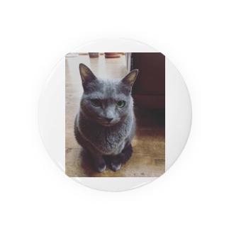 うちの猫がこんなにもめんこい Badges