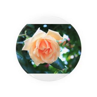優しい薔薇 Badges