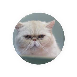 いつかの猫(大) Badges