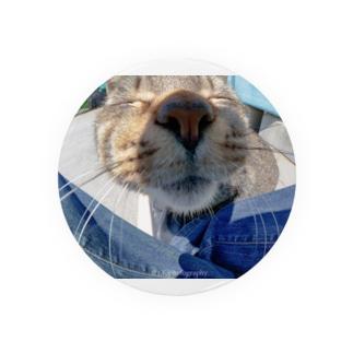 魚眼越し猫ちゃん Badges