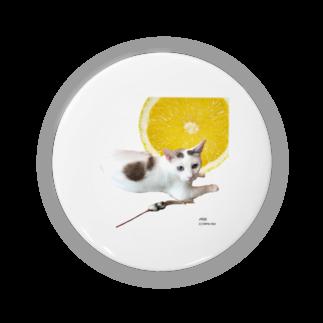 保護猫カフェ「駒猫」さん家のNo.1 レモンなノアくん Badges