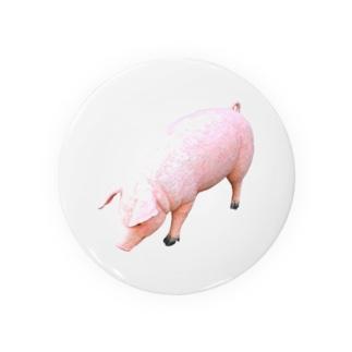 豚 Badges