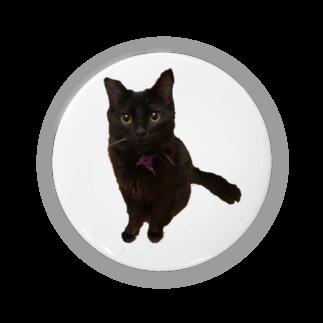 ねこまちランドのおすわりレオン2 Badges