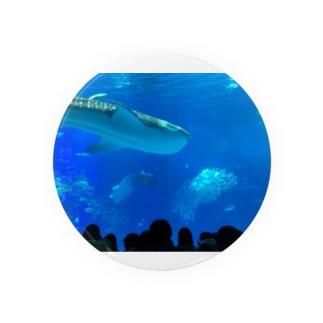 ジンベイザメの写真 Badges