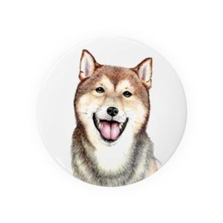 柴犬缶バッチ Badges