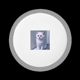 n̥ḁt̥s̥u̥m̥i̥のねこ Badges