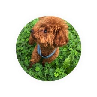 我が家のお犬様 Badges