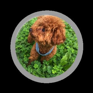 mamekurumiの我が家のお犬様 Badges