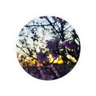 CherryBlossom Badges