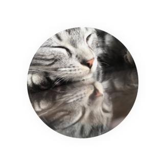 反射猫 Badges