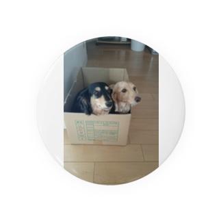 箱入りの犬 Badges