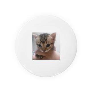 子猫 Badges