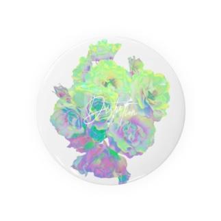 DSR / GREEN Badges