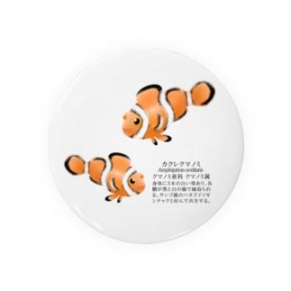 カクレクマノミ Badges