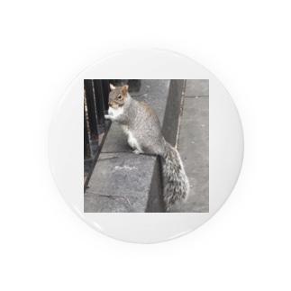 scat_kingramのリスさん Badges