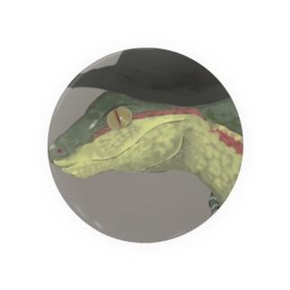 蛇界の新入りスリザリン Badges