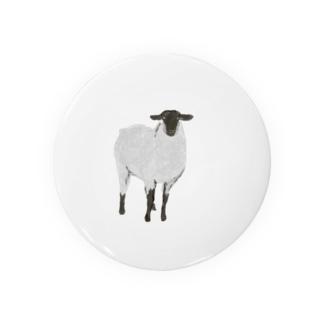 Calm sheep Badges