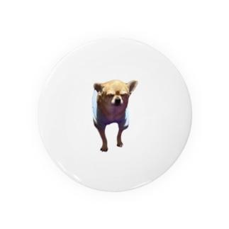 うちの犬のチワワ001 Badges