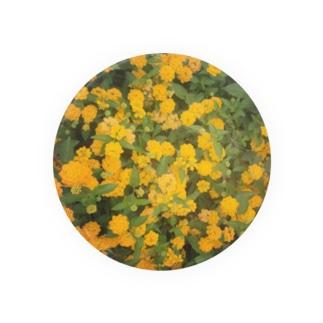 黄色い花 Badges