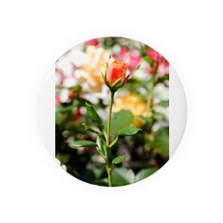 FLOWERS-蕾- Badges