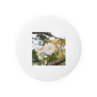 今年の桜~ Badges