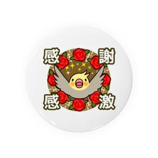 感謝感激オカメインコ【まめるりはことり】 Badges