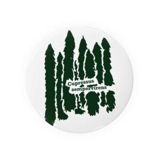 キナバル_ホソイトスギ No.4 Badges