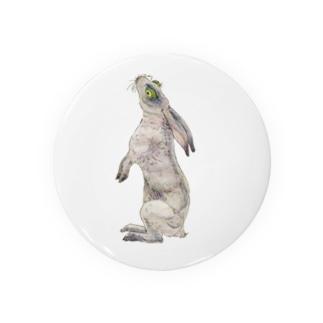Rabbit Badges