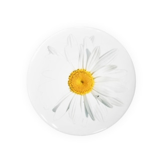 lenhung2108のdaisy flower Badges