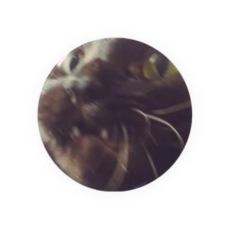なんや猫 Badges