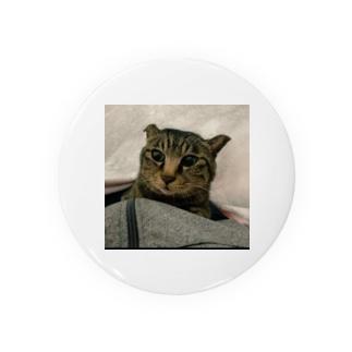世界一可愛い猫のグッズ Badges