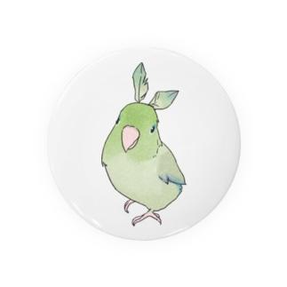 お羽飾り マメルリハちゃん【まめるりはことり】 Badges
