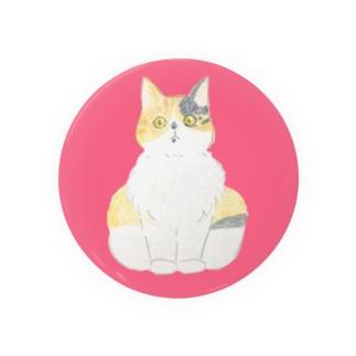 ビックリ顔の三毛猫つぼみ Badges
