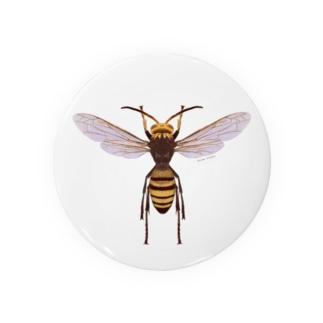 ヒメスズメバチ♂ Badges