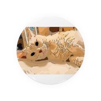 猫 クリームタビー アメショ Badges
