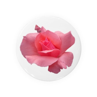 The Rose (Half-blooming) Badges