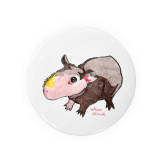 スキニーギニアピッグ(毛のないモルモット) Badges