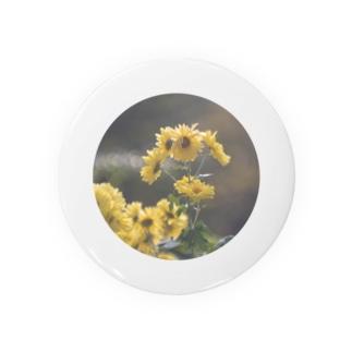 黄色の輝き Badges
