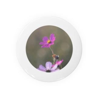 咲き誇るピンク Badges