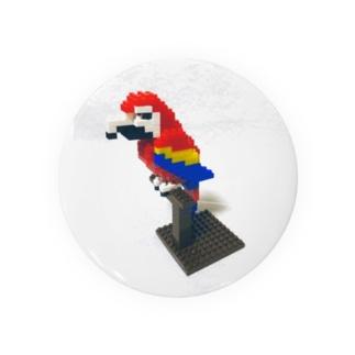 Blocks Scarlet Macaw Badges