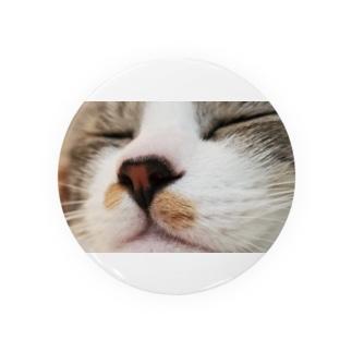うちの猫のもこもこ Badges