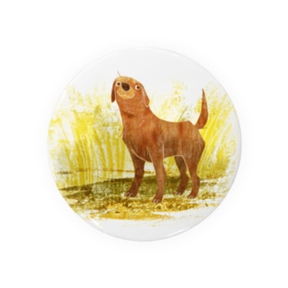 LABRADOR the best dog Badges