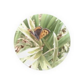 蝶の一休み Badges